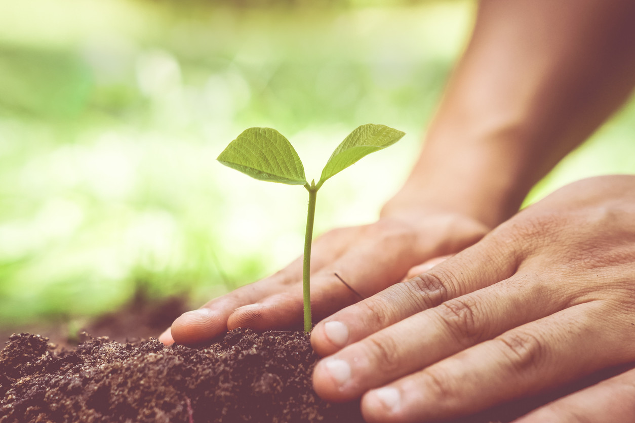 pensar en e futuro economía circular