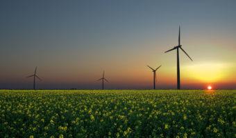 Buenas noticias: las energías renovables dominarán el futuro de la electricidad