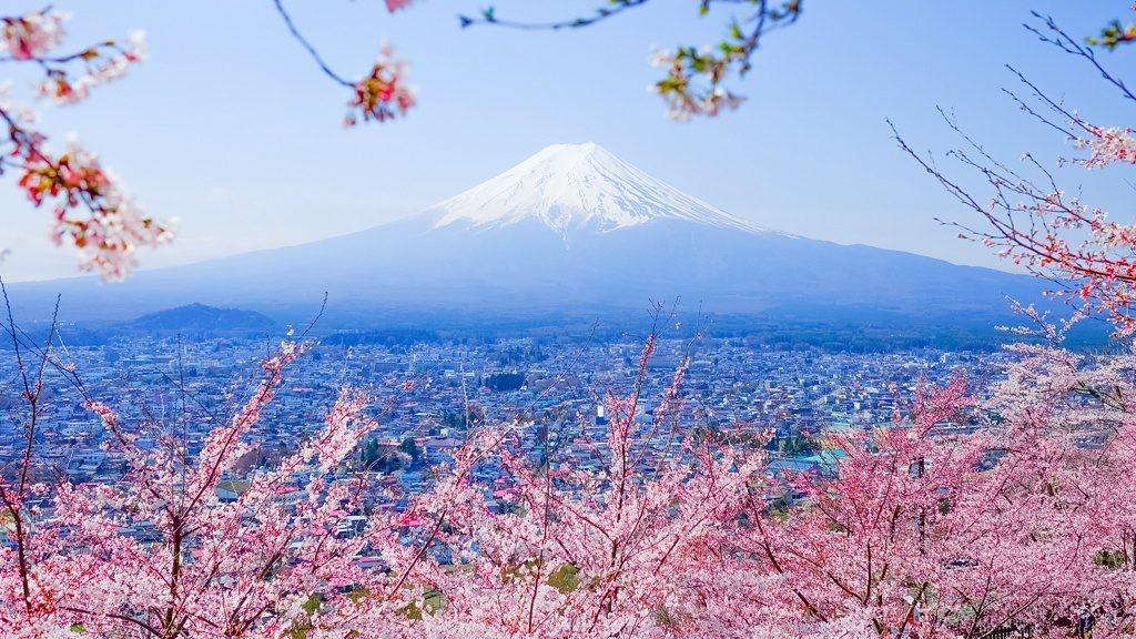 Cerezos en Japón