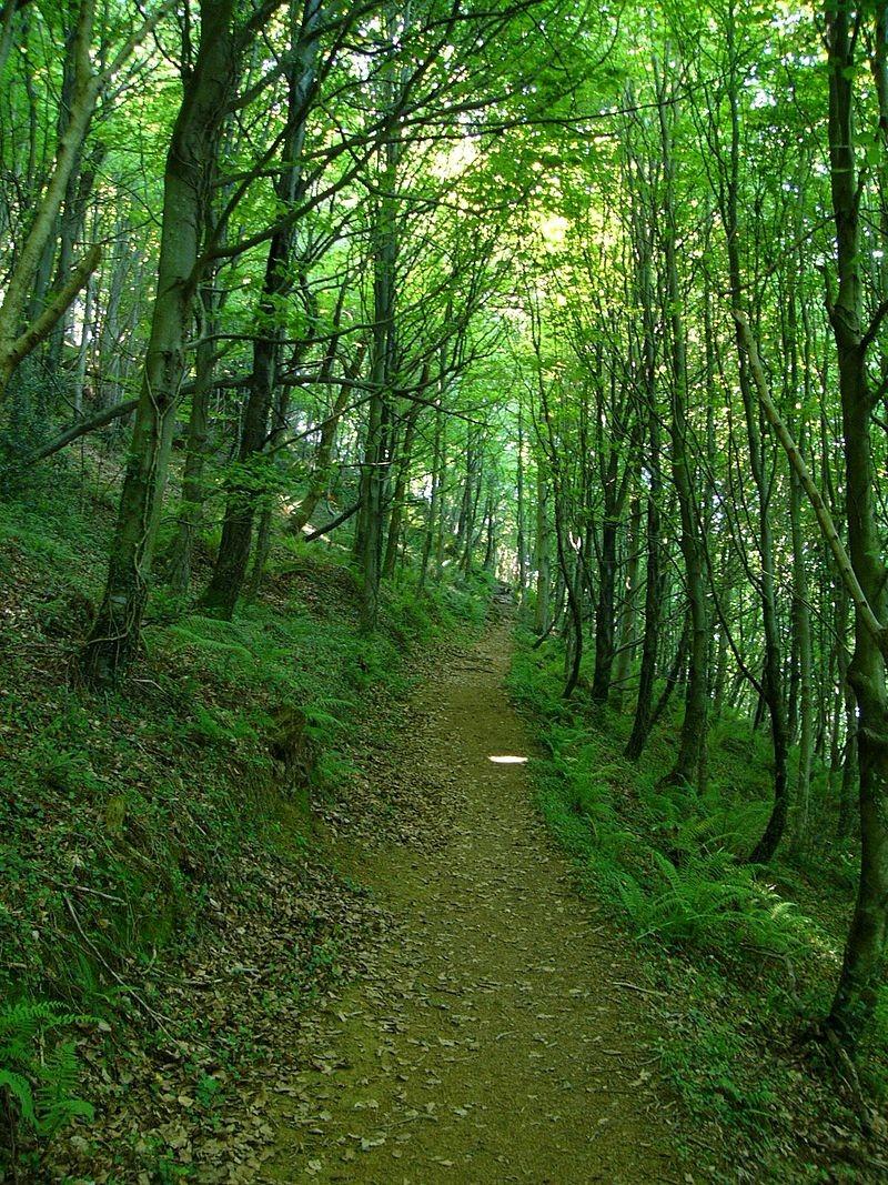 Ruta Parque Natural Pagoeta