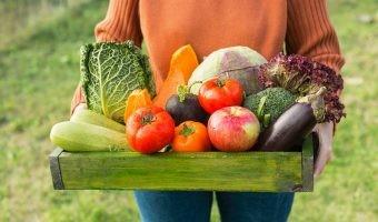 Cultivar verduras en tu ciudad tiene más beneficios de lo que esperabas