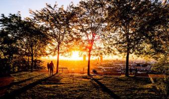 Por qué las zonas verdes de una gran ciudad no nos libran siempre de la contaminación