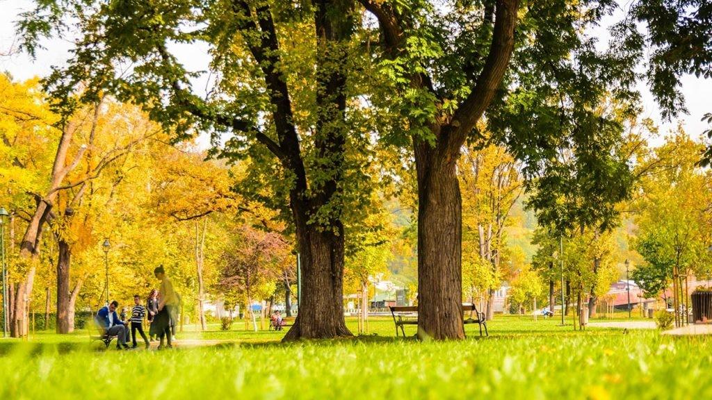 Los municipios de la red La ciudad de los niños cuentan con más parques y espacios verdes.