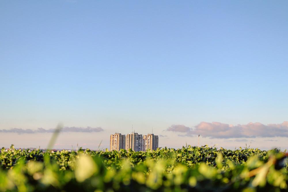 Sostenibilidad y salud en las ciudades