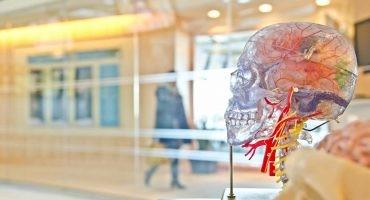 ¿Qué es la neuroarquitectura y cómo puede cambiar nuestras viviendas?