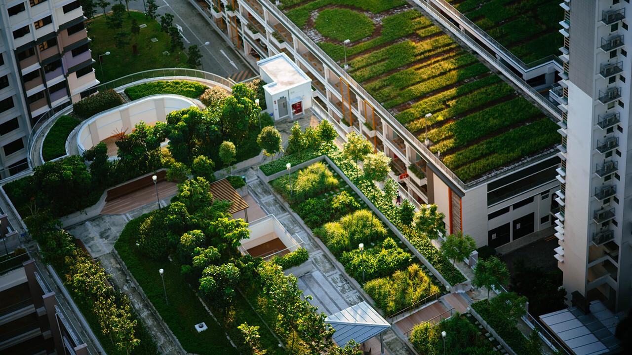 aclimatar vivienda jardin