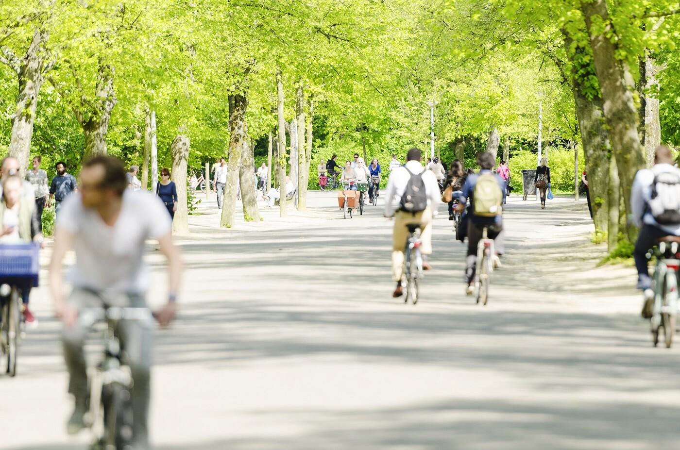 Zonas verdes en Madrid