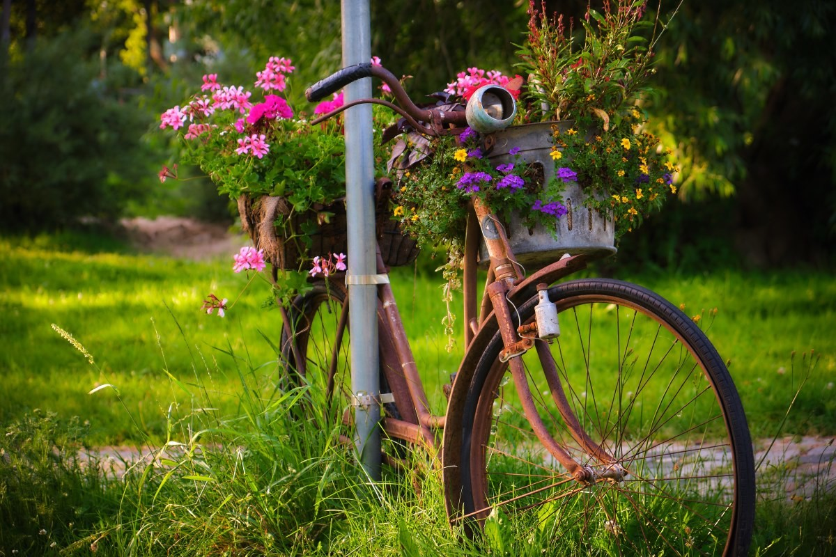 bicicleta oxidada en parque
