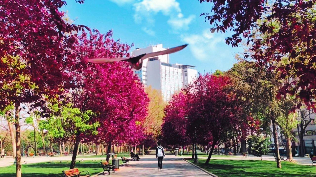 parque metabolismo urbano