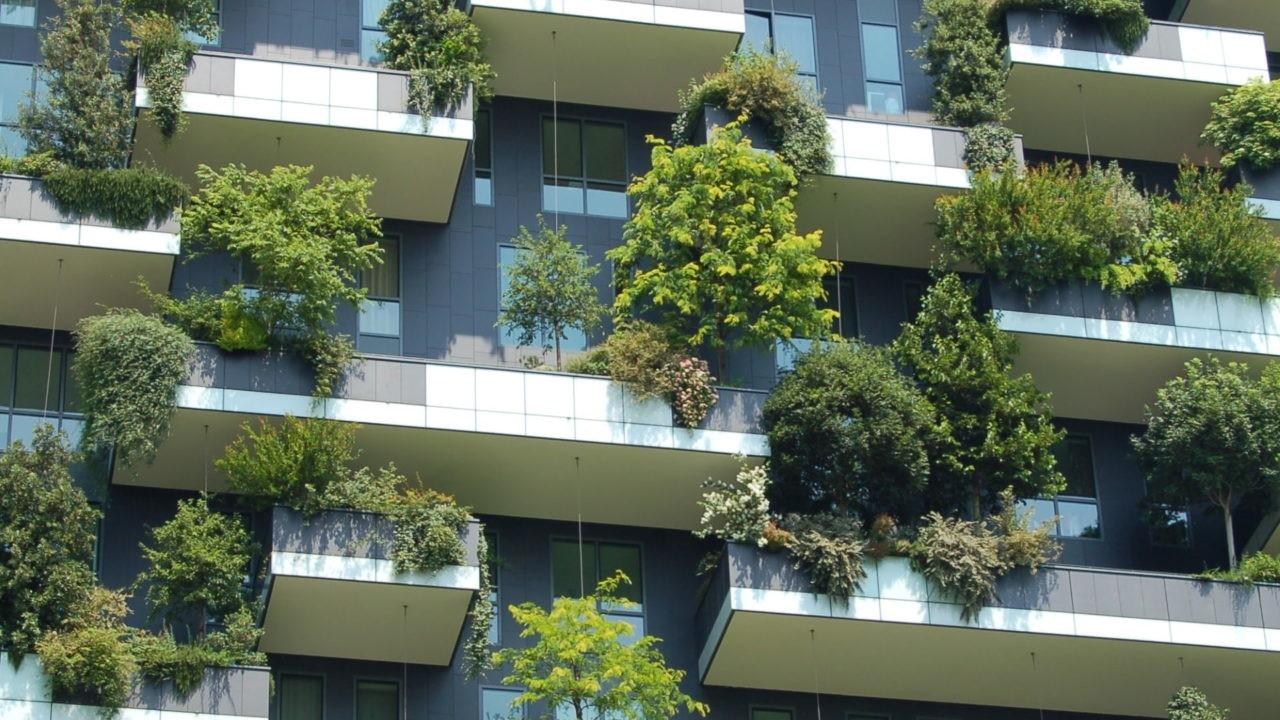 revolucion verde